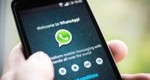 Actopan WhatsApp > 772 141 8791